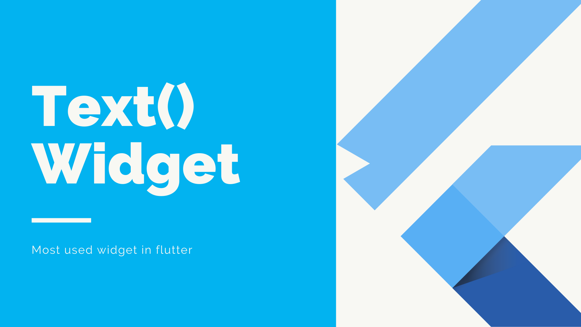 Most used widget in flutter, Text Widget